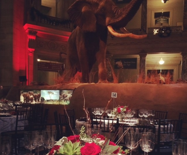 Urban Petals created floral arrangements for KPMG's holiday party at the Museum of Natural History.
