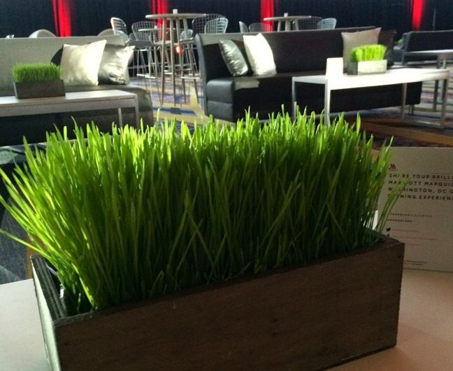 Marriott Marquis, DC grand opening - Urban Petals